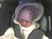 KRISTÝNA HERZIGOVÁ, KLADNO. Narodila se 16. října 2018. Po porodu vážila 2,46 kg a měřila 44 cm. Maminka je Alena Dieneltová. (porodnice Kladno)