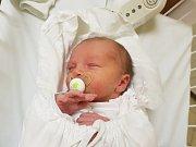 TOMÁŠ FALTUS, KLADNO. Narodil se 11. prosince 2017. Po porodu vážil  3,4 kg a měřil 50 cm. Rodiče jsou Alice Kafková a Tomáš Faltus. (porodnice Kladno)