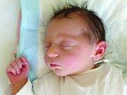 Karolína Košařová, Vinařice. Narodila se 25. dubna 2012, váha 2,94 kg, míra 48 cm. Rodiče jsou Jitka a David Košařovi. (porodnice Kladno)