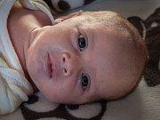 Karel Beníšek z Újezdce (3075 g, 48 cm) se narodil v klatovské nemocnici 10. března ve 12.11 hodin. Rodiče Jana a Karel přivítali svého prvorozeného syna na světě společně.