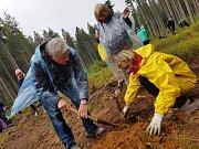 Sázení stromků s WeLoveŠumava.