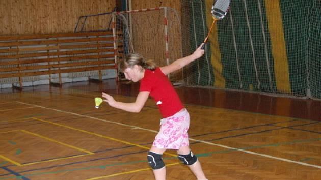 Badmintonový turnaj na Vodojemu