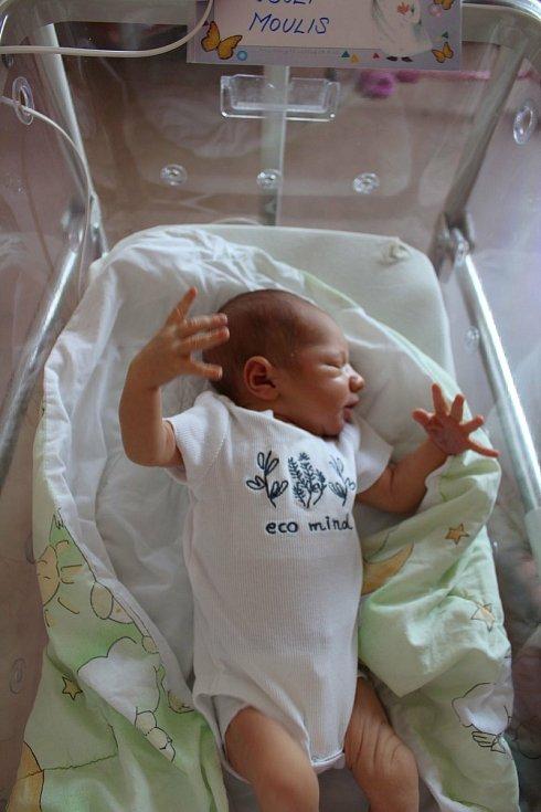 Josef Moulis se narodil 12. června ve 13:53 hodin rodičům Kateřině a Dominikovi ze Zruče. Po příchodu na svět ve FN v Plzni na Lochotíně vážil jejich prvorozený chlapeček 3620 g a měřil 52 cm.