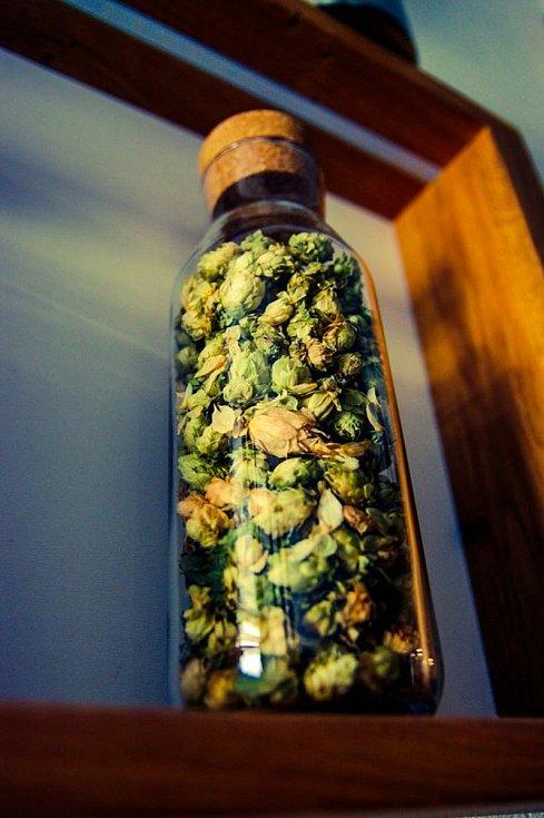 Kastelán si vyzkoušel výrobu piva pro Kašperk.