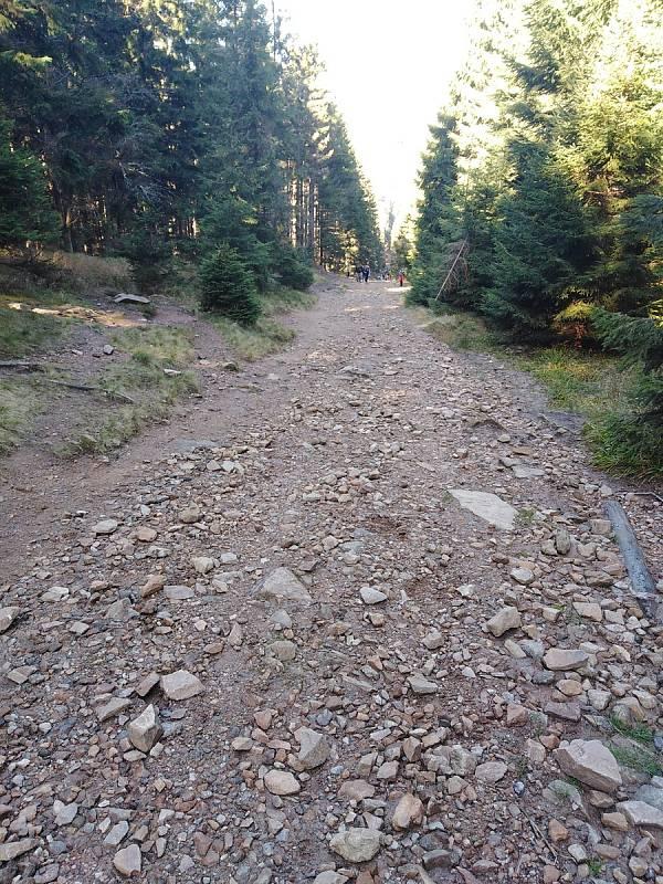 Cesta od Černého jezera k Čertovu jezeru.