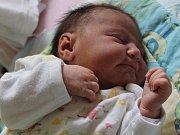 Miroslava Ferková z Klatov (3270 gramů, 47 cm) se narodila v klatovské porodnici 19. května v 15.30 hodin. Rodiče Miroslava a Václav věděli dopředu, že Vaškovi (3) přinesou domů sestřičku.