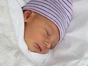 Hynek Nocar z Dolců (2680 g, 49 cm) se narodil v klatovské porodnici 30. listopadu v 9.59 hodin. Rodiče Věra a Luboš přivítali očekávaného syna na světě společně. Na brášku se těší Vilém (17) a Vesna (4).