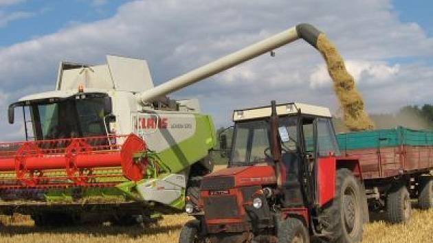 Kombajny polykají první hektary letošní úrody