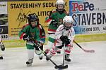 Minihokej 2. třídy 2016/2017: HC Klatovy (bílé dresy) - HC Domažlice 6:5
