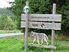 Dřevěný vlk, kterého někdo ukradl.