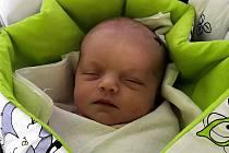 ELEANOR STUIBER z Děpoltic se narodila 16. října v klatovské porodnici (2890 g, 48 cm). Doma na sestřičku netrpělivě čekala Emma (2,5).