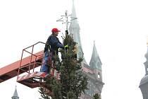 Zdobení vánočního stromu na klatovském náměstí