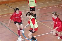 Posledníkolo měly na programu fotbalistky Dívčí amatérské ligy. Už jisté vítězky, Kobra Bolešiny A, v něm porazily Andělky 11:0.