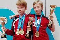 """Tři """"zlaté"""" poháry pro vítěze si z Grand Prix Ostrava 2016 přivezli karatisté KK Klatovy Kryštof Ruža a Anika Draheimová."""