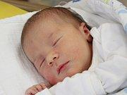 Nikol Poláková z Klatov (3500 g, 49 cm) se narodila v klatovské porodnici 19. dubna v 5.48 hodin. Rodiče Denisa a Rostislav přivítali očekávanou dceru na světě společně. Na sestřičku se těší Lukášek (3,5).