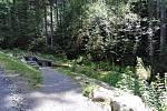 Kneippovy lázně v Železné Rudě.