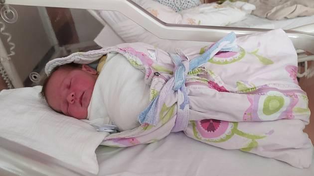Tomášek Fiala zKlatov se narodil vklatovské porodnici 4. září v 8:47 hodin rodičům Věře a Tomášovi. Doma se na brášku těšila dvouletá Natálka.