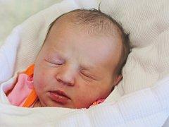 Alice Kalčíková z Přeštic (3110 g, 51 cm) se narodila v klatovské porodnici 17. května ve 12.00 hodin. Pohlaví prvorozeného miminka bylo pro maminku Jitku a tatínka Zdeňka překvapením.