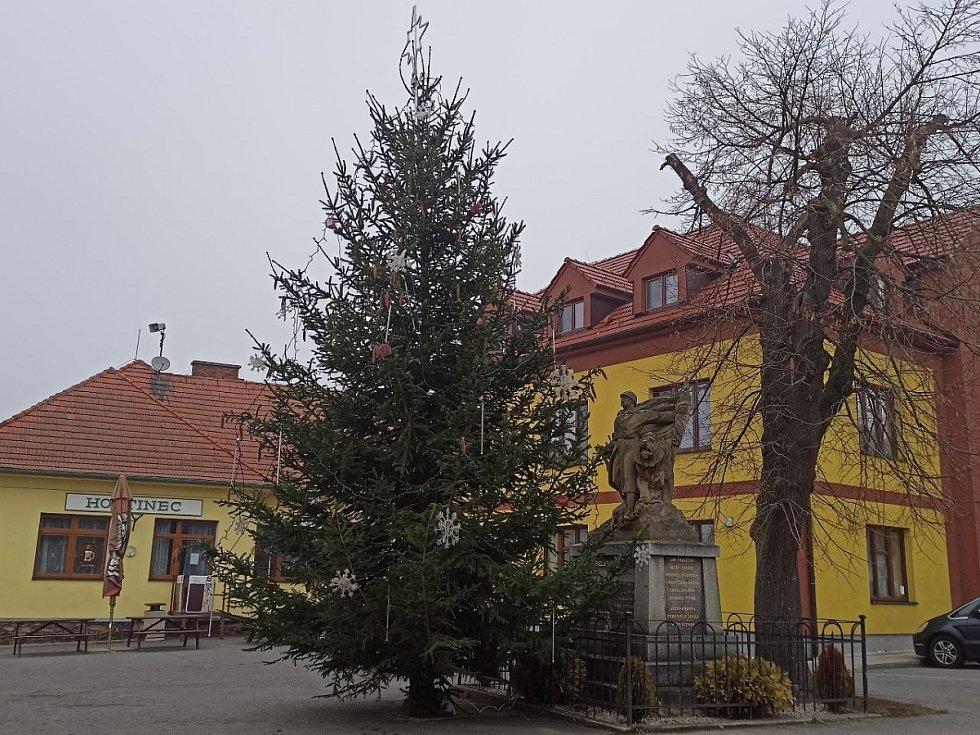 Vánoční strom v Dolanech.