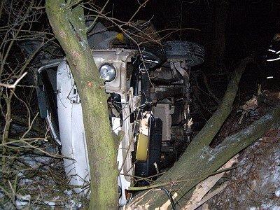 Řidič avie se lekl autobusu a přerazil dva stromy