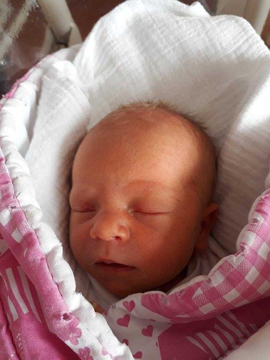 Leontýna Lehrová z Přeštic (2470g, 45 cm) se narodila 4. srpna v 5.56 hodin v klatovské porodnici. Rodiče Dagmar a jiří věděli, že Karolínce (9 let), Justýnce (9 let) a Jolance (5 let) přinesou domů sestřičku.  foto: Deník/Lucie Kohoutová
