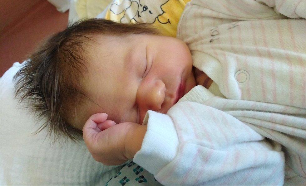 Elena Faměrová ze Sušice se narodila v klatovské porodnici 15. října v 10:35 hodin (3790 g, 52 cm). Rodiče Michaela a Vojtěch věděli pohlaví svého miminka předem, tatínek byl u porodu.