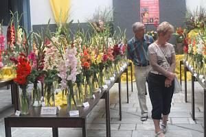 První výstava mečíků a jiřinek se konala o tomto víkendu v atriu kulturního domu Družba v Klatovech.