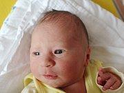 Damian Laně z Předslavi    (2970 g, 47 cm) se narodil v klatovské porodnici 19. března v 11.59 hodin. Rodiče Lenka a Josef věděli, že budou mít syna. Z brášky se doma raduje Tobias (4).