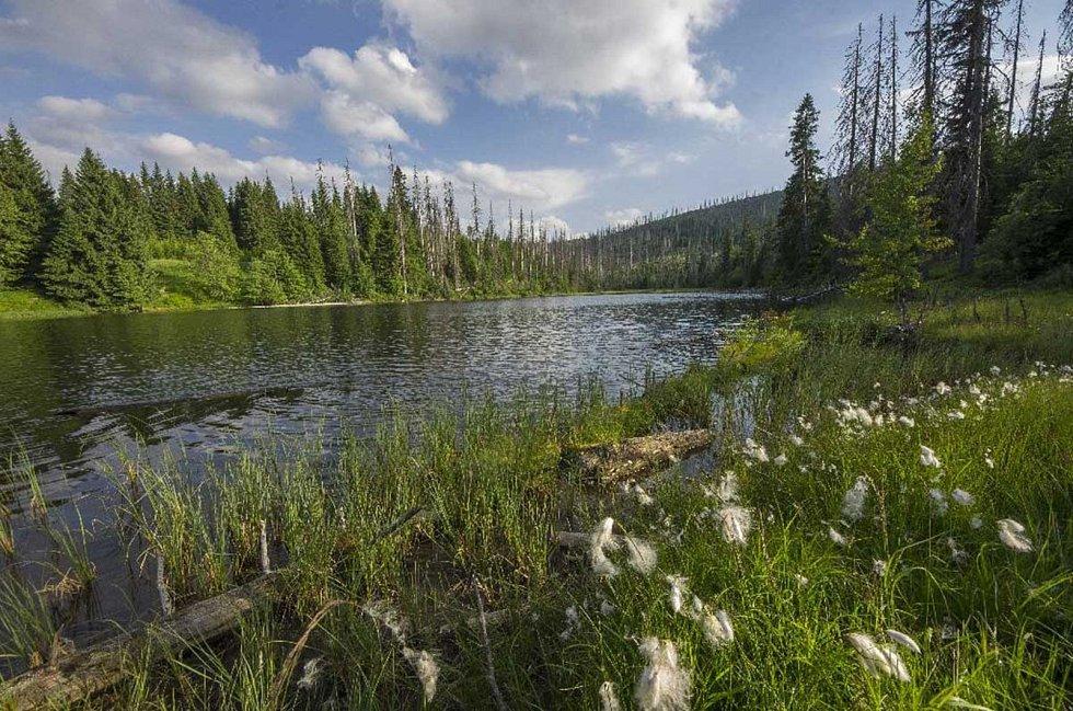 Jezero Laka.