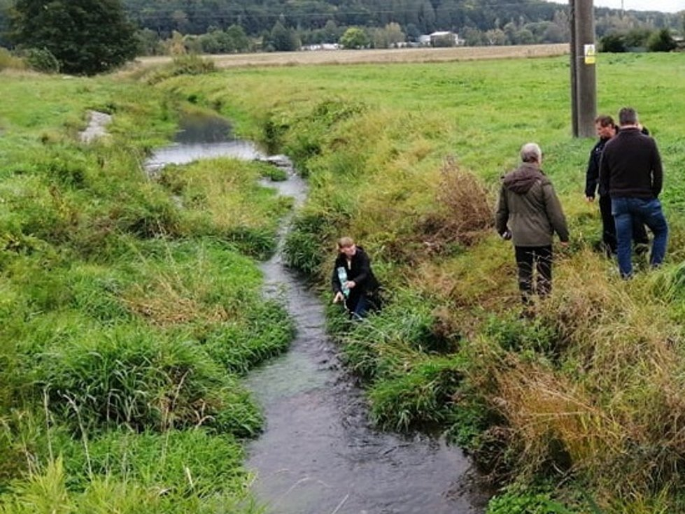 Do Drnového potoka v Klatovech uniklo velmi nebezpečné mořidlo, zabilo ryby.  Foto: MP Klatovy