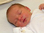 Hynek Andrle z Klatov (3460 g, 50 cm) se narodil v klatovské porodnici 4. srpna ve 14.52 hodin. Rodiče Miluše a Jan věděli, že Nelinka (4) bude mít brášku. Syna na světě vítali společně.
