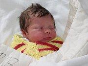 Sára Hejtmánková ze Sušice (3700 gramů, 52 cm) se narodila v klatovské porodnici 18. května ve 3.51 hodin. Rodiče Lucie a Adam věděli dopředu, že Lauře (2,5) přinesou domů sestřičku.