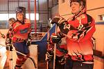 Hokejová exhibice v Sušici