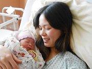 Nhu Y Dinh Nguyen z Železné Rudy (3350 g, 50 cm) se narodila jako první miminko roku 2017 v Klatovské porodnici. Doma na ni čeká šestiletý bráška.