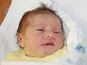 Eliška Štěpánková z Plzně (3160 g, 48 cm) se narodila v klatovské porodnici 6. června ve 3.00 hodin. Rodiče Jitka a Ondra věděli, že se jim narodí dcera. Na sestřičku se těší Lucinka (5).