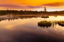 Chalupská slať je největší rašelinové jezírko v ČR.