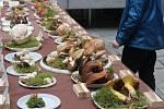 Výstava hub v Klatovech.