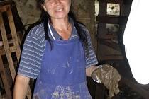 Dana Hamplová pomáhá v zaplavených oblastech