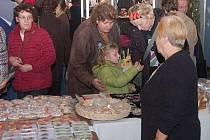 Vánoční výstava v klatovském kulturním domě