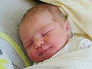 Julie Hanzová z Pocinovic (3520 g, 50 cm) se narodila v klatovské porodnici 23. července v 15.28 hodin. Rodiče Soňa a Jan si nechali jako překvapení, zda Sofinka (3) bude mít brášku nebo sestřičku.