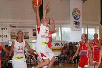 Basketbal: ČR - Chorvatsko  102:82