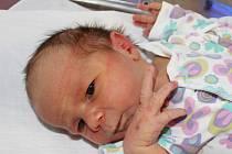 Nikola Ouředníková z Jetenovic (3540 g) se narodila v klatovské porodnici 30. listopadu ve 14.30 hodin. Rodiče Markéta a Josef věděli, že jejich první dítě bude holčička.