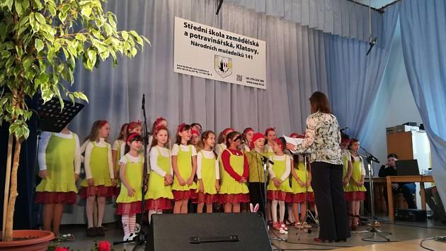 Školní akademie ZŠ Klatovy, Čapkova.