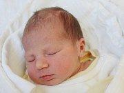 Viktorie Křížová z Nýrska (2990g, 49 cm) přišla na svět v klatovské porodnici 5. ledna ve 14.04 hodin. Rodiče Tereza a Jaroslav věděli, že budou mít holčičku. Doma se na sestřičku těší Eliška (3).
