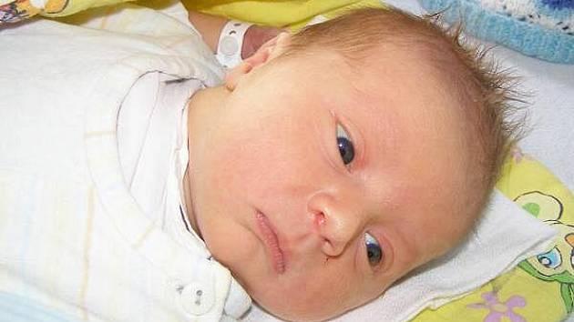 Jan Trš ze Sušice se narodil v klatovské porodnici 14. června 2010 v 15.38 hodin s mírami 3860 gramů a 52 centimetrů. Rodiče Josef Trš a Šárka Havlíková znali pohlaví miminka již před porodem. Z brášky má radost i dvanáctiletý Martin.