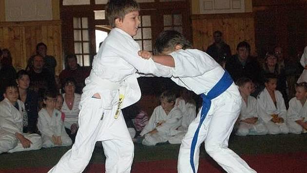 30. let judo v Sušici