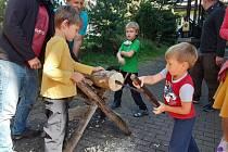 Akce věnovaná dřevařství.