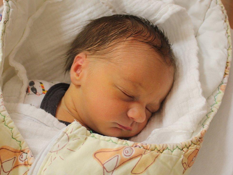 Michal Sedláček z Klatov se narodil v klatovské porodnici 15. ledna v 13.55 hodin (2630 g, 49 cm). Rodiče Lucie a Filip dopředu věděli, že jejich prvorozeným miminkem bude chlapeček.