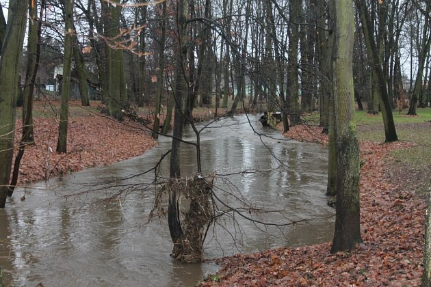Drnový potok v Klatovském parku v neděli v 15 hodin