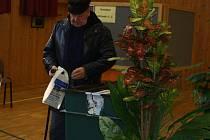 Volby v Janovicích nad Úhlavou